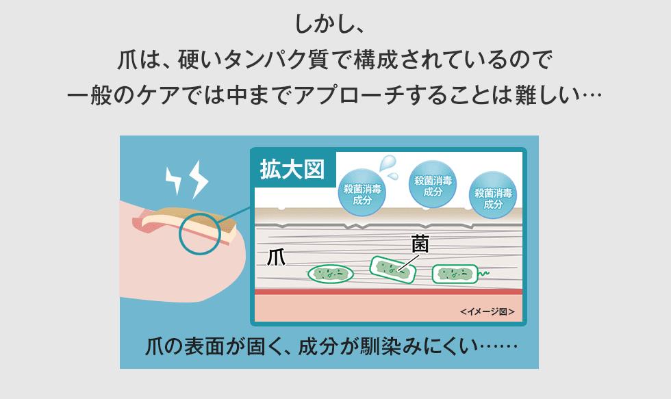 しかし、爪は、硬いタンパク質で構成されているので一般のケアでは中までアプローチすることは難しい…